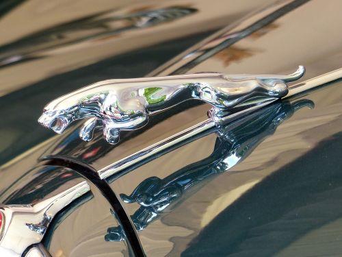 oldtimer jaguar cool figure