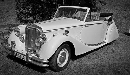 oldtimer  jaguar  auto