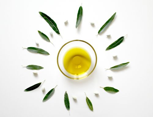 olive olive oil olive leaf