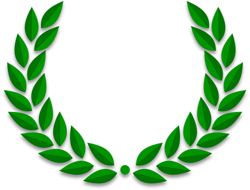 olive leaves branches