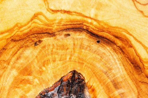 olive wood wood grain