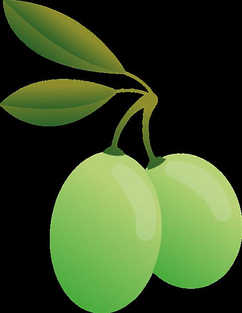 olives green oil