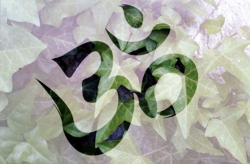 om meditation plant