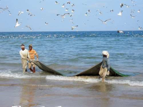 Oman Fishermen