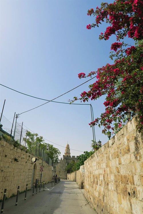 on  city  jerusalem