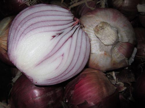 onion red onion raw