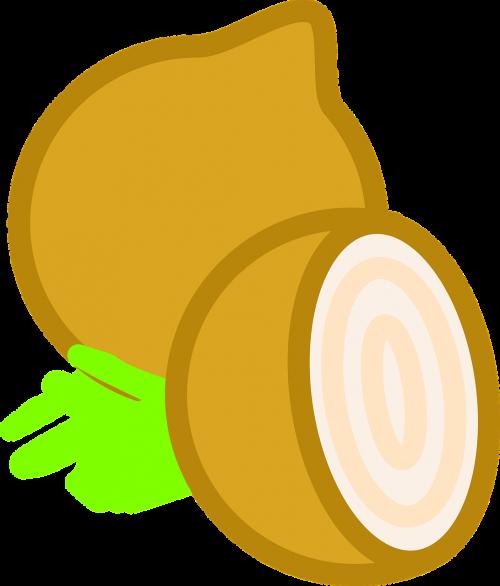 onion healthy vegetable