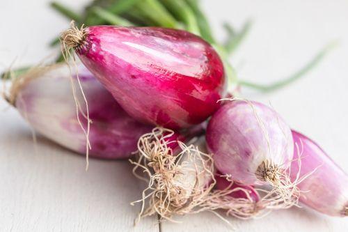 onion tropea raw