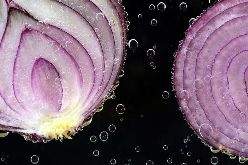 onion red onion raw