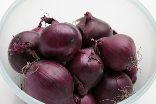 onion red antioxidants