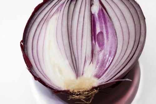 onion allium cepa red onion