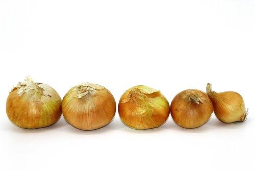 onion  old  winter