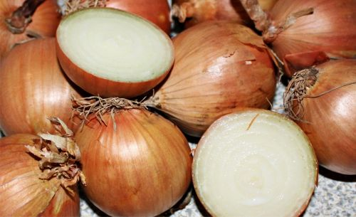 onion vegetable onion brown