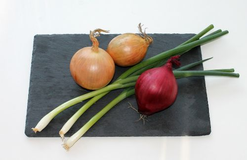 onion food red onion