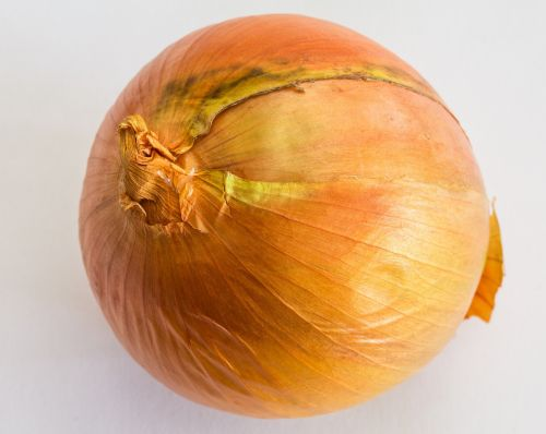 onion onions bolle