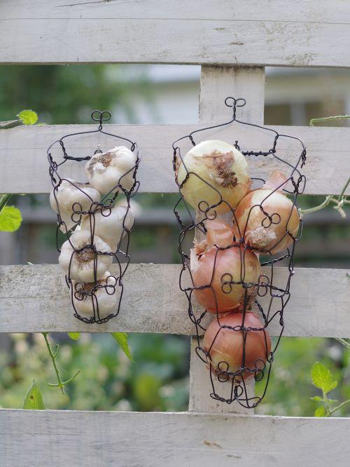 onions garlic wire