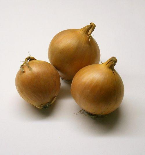 onions vegetables ingredient