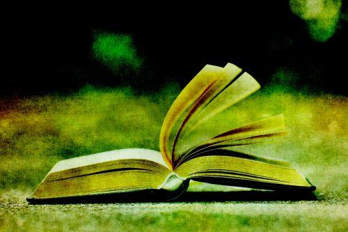 Open Book Vintage