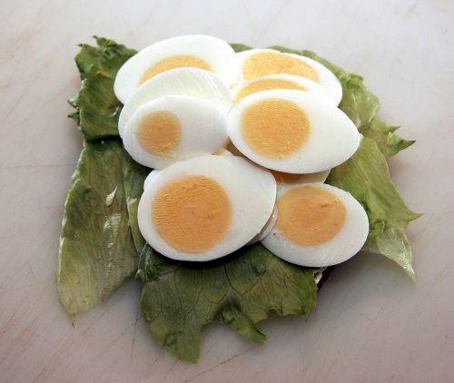 open-faced sandwiches open sandwich salad
