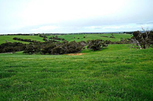 open fields rolling hills paradise