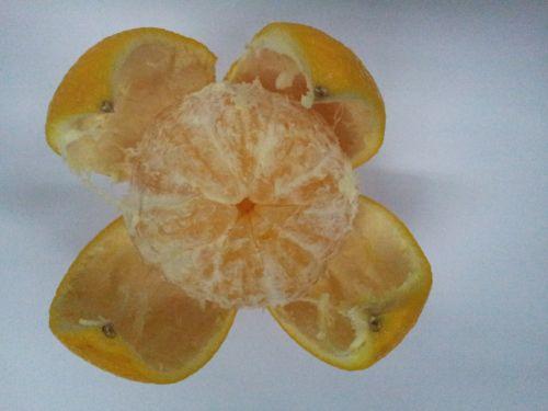 Opened Orange