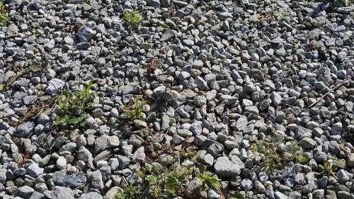 optical effect camouflage bio-camouflage