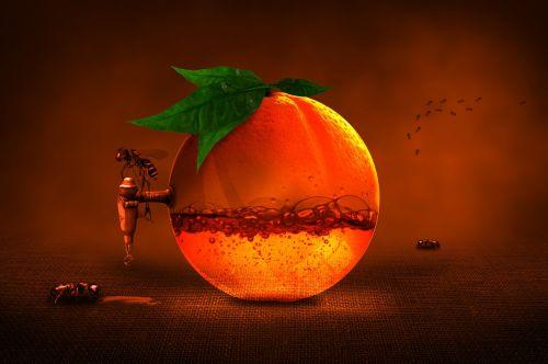 orange fruit citrus fruit