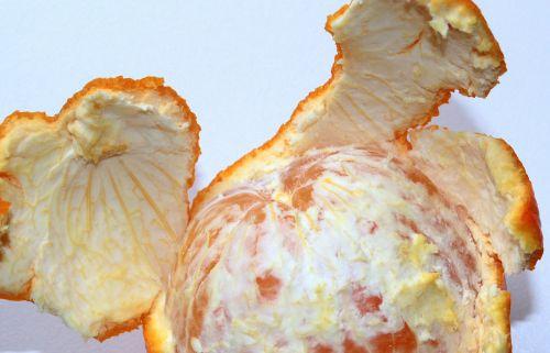 orange fruit orange peel