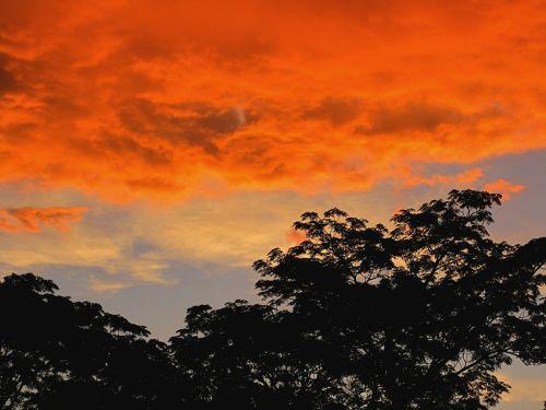 orange bright sunset