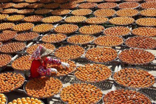 orange tangerine chinese dry tangerine