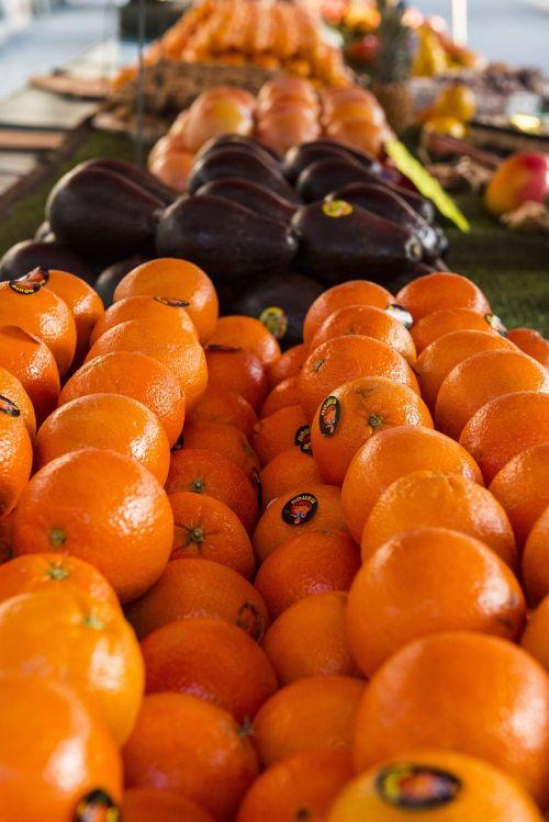 orange fruit sun