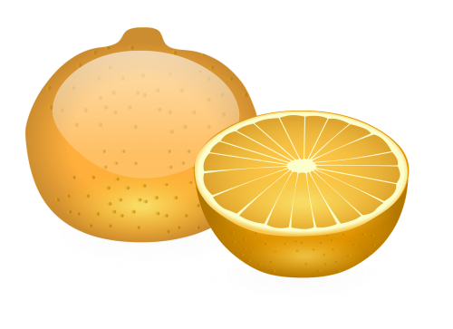 orange fruit slice