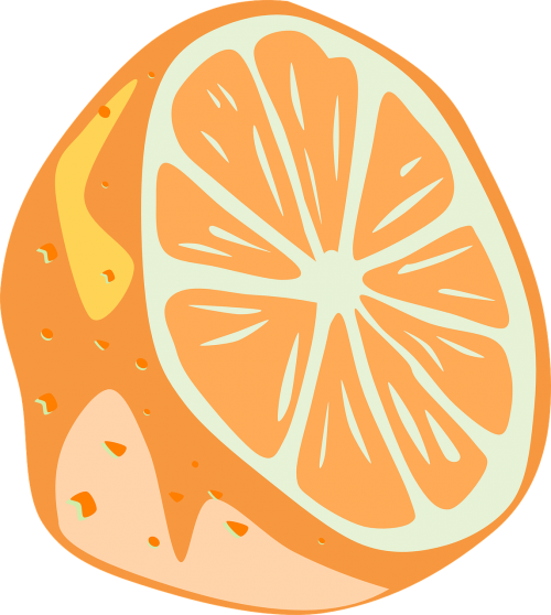 orange half slice