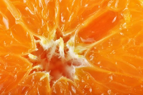 orange orange fiber fiber