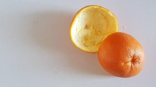 orange  peel  scorza