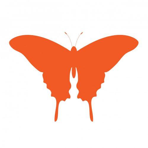 Orange Butterfly Clipart