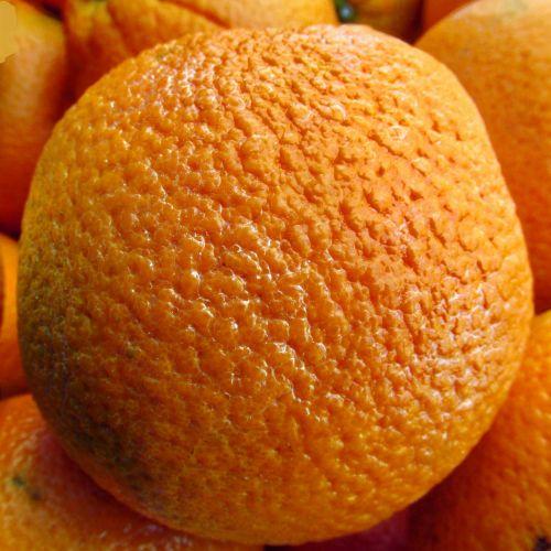 Orange Closeup