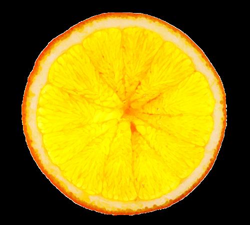 orange slice orange slice
