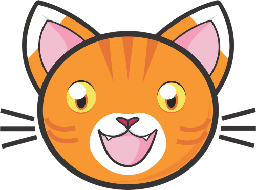 orange tabby cat orange tabby tabby