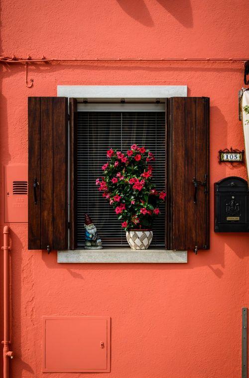 orange window home balcony plants