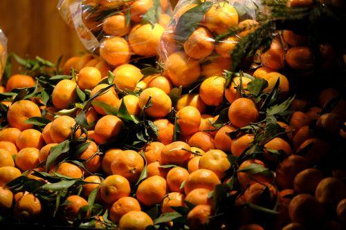 oranges grapefruit lemons