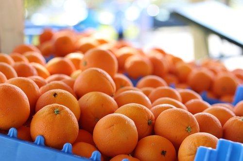 oranges  fruit  produce