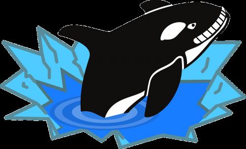 orca fish penguin enemy