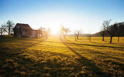Orchard Barn Sunset