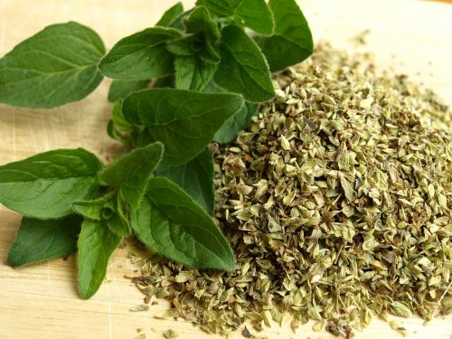 oregano herbs kitchen