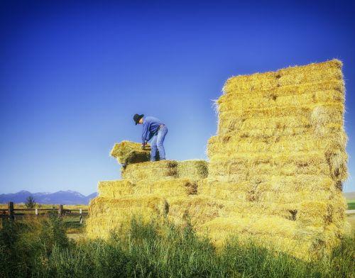 oregon farm rancher