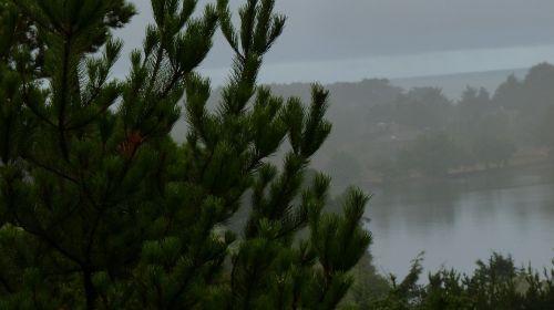 oregon pacific northwest coast