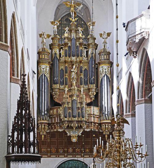 organ gallery stralsund