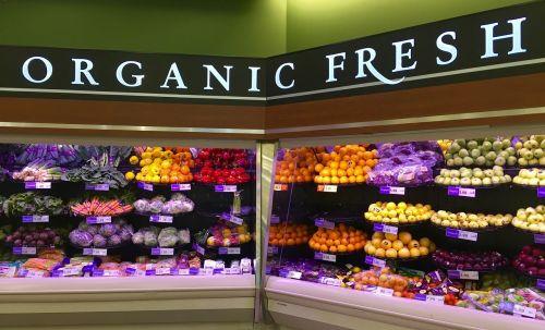 organic organic food food