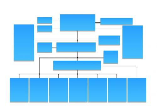 organization organization chart building